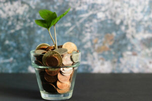 When should I start trying to monetize my website?